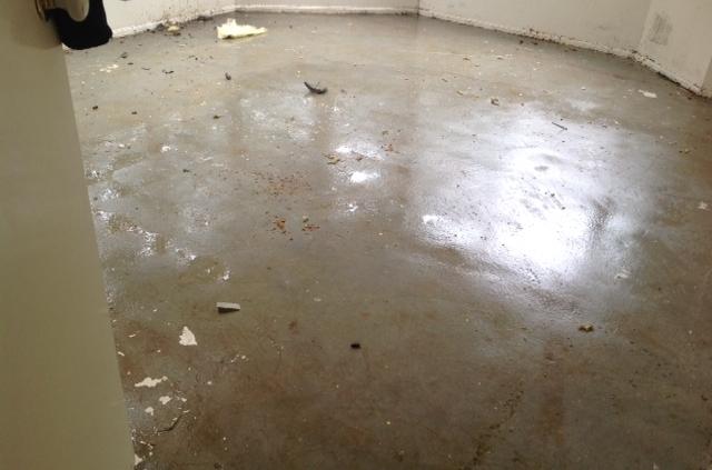 Floor Damage restoration
