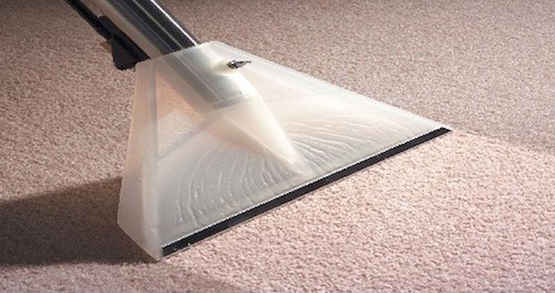carpet cleaning tweed heads