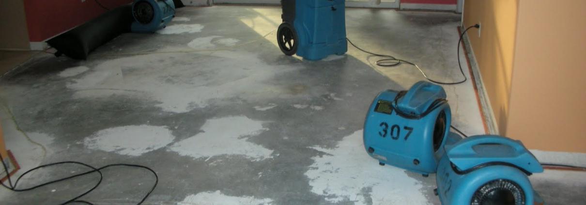 Water Damage Restoration Munruben Sunstate Cleaning